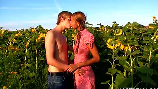 Amazing Sex In A Sunflower Field